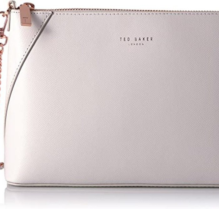 Bolso Ted Baker CHANIA GRIS